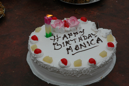On her first birthday, Monica's parents decided to take the whole family out for an excursion to the National Zoological Park, New Delhi. An egg-less cake (Sharma's are vegetarians) was also cut to mark theoccasion of her birthday.   Miss Monica, Renu Sharma's baby girl is now one year old, Monica is an active naughty child who looks happy and has started walking on her own. She talks a little bit uttering `mama; baba' among other small words.  Mrs. Renu Sharma (24 yrs) delivered a healthy baby girl named Monica on January 28, 2005, both mother and child seem healthy. She still breastfeeds up to 15 times daily. The baby is being given top feed of home made cereals, fruits.  Monica was her third child and her husbands name is Jai Narayan Sharma. Earlier siblings are Lakshya (6) and Divya (4).   This feature is one of the six photo stories of Great Expectations project for the World Health Day 2005: six mothers living in different countries of the world share their experiences of pregnancy and childbirth. In India, the photographer has been following, Renu, from her pregnancy to the birth of her daughter, Monica.  Delhi Zoo and Surhera Village, Najafgarh, Delhi, India. Januray 28, 2006