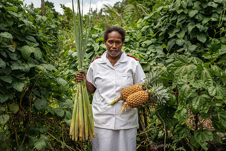 """Virginia Legaile, a nurse and NCD coordinator, holds pineapple and wheat from her garden in Tulagi, Solomon Islands on 5 March 2021. As part of her work with NCD patients, Virginia keeps a garden on the hospital grounds and shares seeds or """"starts"""" for vegetables with her patients, while educating them on nutrition and healthy eating. - In Solomon Islands, WHO recognised that health systems needed to develop to accommodate a rise in noncommunicable diseases or NCDs in the region. Previously, health programs were mostly designed to treat patients with acute conditions or diagnosis. However, the increase of NCDs like cardiovascular disease, diabetes, cancer and chronic lung diseases pose a grave threat to regional and national health and development. Working hand in hand with the Ministry of Health and the provincial governments, WHO helped design a program that would respond to the rise in NCDs in the region. The program aims to provide better overall care for patients, including screenings as well as prevention and treatment of NCDs, primarily cardiovascular diseases related to diabetes, hypertension, obesity, etc.  Known as the PEN (Package of Essential Noncommunicable Disease Interventions) program, this approach considers the patient's whole being and lifestyle, not just specific ailments, and emphasises wellness and prevention activities. Additionally, WHO promotes integration of multiple health services, and the PEN program integrates TB (Tuberculosis) screenings as it screens for NCDs.   The PEN program was started at WHO headquarters in Honiara but is now led by provincial NCD coordinators who have taken ownership of the program. Virginia Legaile, based in Tulagi (about a 1.5 hour boat ride from Honiara), is one of these provincial NCD coordinators. She previously worked as a nurse in an outpatient clinic, but after embracing the NCD screening of patients that was incorporated as part of the PEN program, the medical director increased her hours to see NCD pat"""